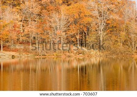 Traccia appalachian in Nuovo-Jersey, fogliame di autunno - stock photo