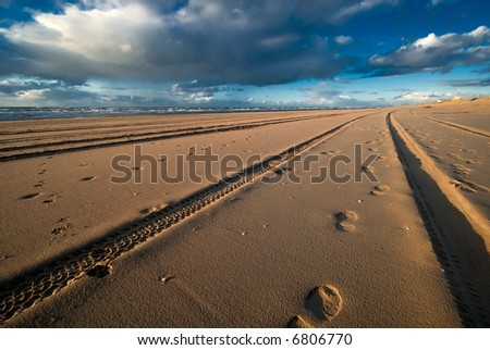 tracks and footsteps on the beach