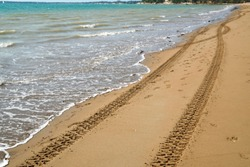 Tracks from tires in the sand on the beach in Darwin, Australia
