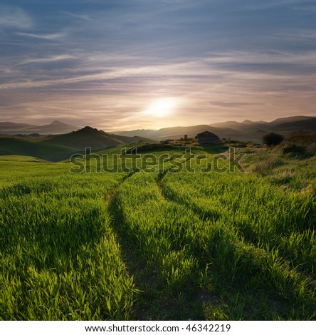 tracks of tractor crossing a green grass with a abandoned hut against overcast sky at the sunset and the hilly horizon misty - stock photo