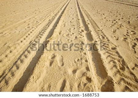 tracks on a sandy beach - in warm sunlight