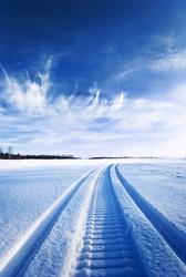 Tracks on snow