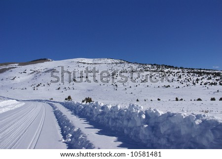 Tracks on snow covered road in mountains,		Cordillera,	Colorado