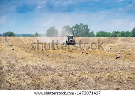 Tractor cultivating the field after harvesting