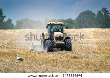 Tractor cultivating the field after harvesting and some storks near it