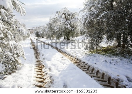 tractor imprints   on a country road in snow , winter