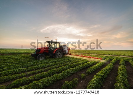 Tractor spraying a field of soybean #1279749418
