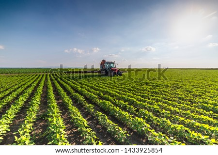 Tractor spraying pesticides at soy bean fields