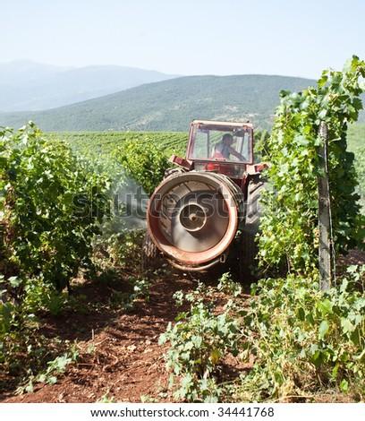 Tractor spraying vineyard field