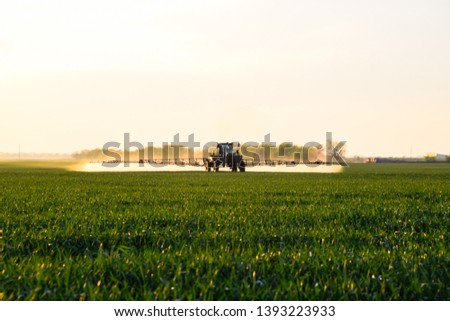 Tractor with the help of a sprayer sprays liquid fertilizers on young wheat in the field. The use of finely dispersed spray chemicals. #1393223933