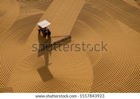 Traditioanal wheat drying under the sunlight #1557843923