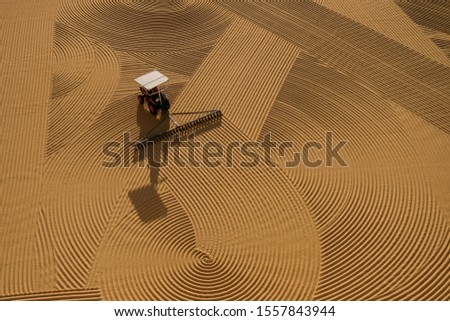 Traditioanal wheat drying under the sunlight