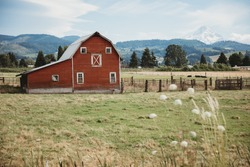 Traditional American farm with a red wooden barn. The beautiful red barn on the background of the Mount Hood. Old red barn in rural, Oregon, USA.