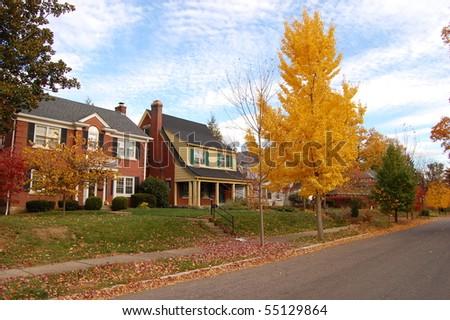 Traditional American Neighborhood