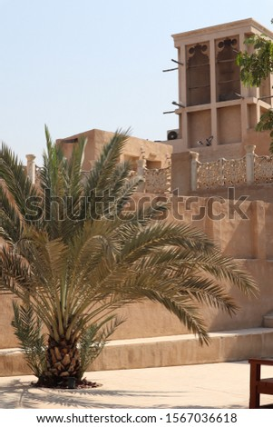 Traditional Arabian town and palms