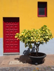 traditional bright yellow house in tenerife with red wooden paneled door and single window with small bush or plant in a pot outside on a summer day with sunlight and shade