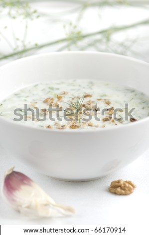 Traditional bulgarian cold summer soup made of yoghurt, cucumbers, garlic, oil, nuts
