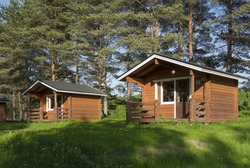 traditional camping cabins with dandelions on the lawn in the shade of pine trees