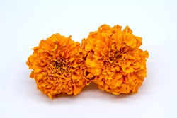 Traditional cempasuchil flowers used for altars at