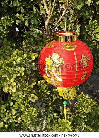 Traditional Chinese New Year Festive Lucky Red Lantern with Fortune god on green leaves background