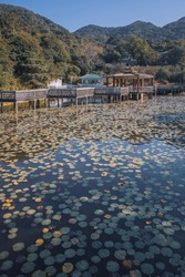 Traditional Chinese Park and Garden next to a Lake, Hong Kong, Outdoor, daytime