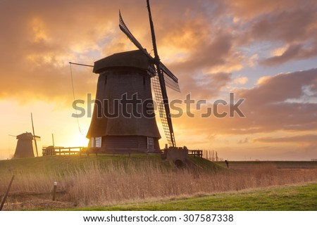 Traditional Dutch windmills at sunrise near Schermerhorn in The Netherlands.