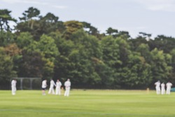 Traditional English village cricket on a clear day with a soft blurry focus.