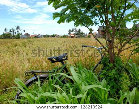 Traditional farm and vintage bicycle, Bali, Indonesia.