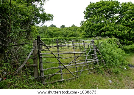 Building Wood Fence Gate Design, Pictures, Remodel, Decor and Ideas