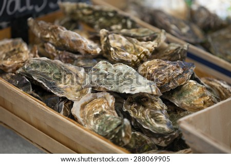 Traditional  fish market stall full of fresh shell oysters