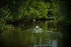 traditional fisherman go to middle of mangrove swamp to fishing