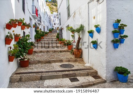 Traditional flowerpots in the street of white village in Andalusia. Pueblos blancos in Spain. Beautiful touristic landmark.  Stockfoto ©