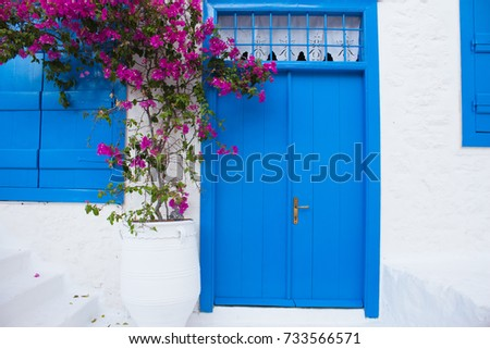 Traditional Greece outdoor view of national house with window and door on the white wall and flowering bougainvillea tree