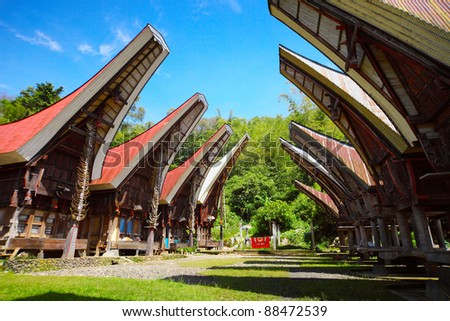 Traditional homes of the Toraja's people on Sulawesi island. Indonesia.
