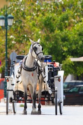 Traditional horse and carriage in Zakynthos Greece