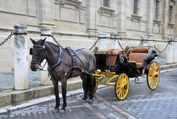 Traditional horse carriage in Seville. Spain. Touristic transport