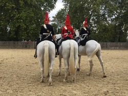Traditional horse mounted guards in London
