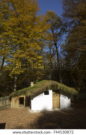 Traditional house in Romania. #744530872