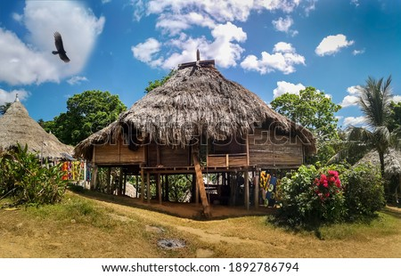 Traditional house of Embera tribe in Panama with Eagle flying above the house. Blue sky with white clouds above, and green garden flowers in front of the house