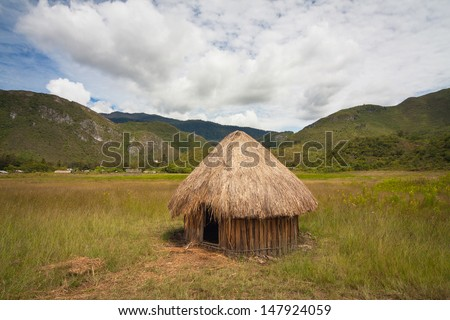 Traditional huts Papuans in Wamena, Papua New Guinea Island, Indonesia