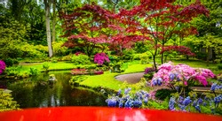 Traditional Japanese Garden.