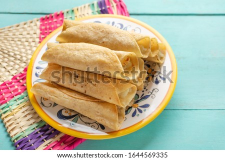 Traditional mexican potato and cheese fried tacos also called flautas on turquoise background Foto stock ©