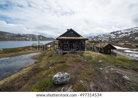 Traditional norwegian houses with grass in Tyinstolen, Norway #497314534