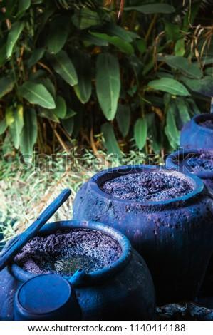 Traditional process of making indigo dye, Indigo plant fermentation in clay pot #1140414188