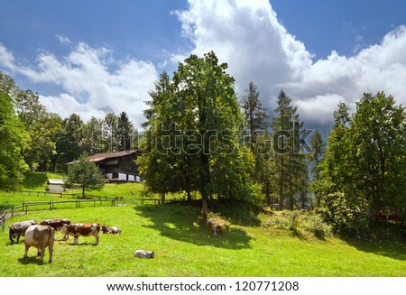 Traditional rural landscape in Switzerland