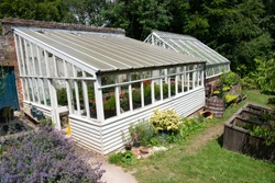 traditional rustic lean to greenhouse full of summer produce