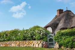 Traditional Scandinavian reed roofed house with flower hedgerow, on Sylt island, at North Sea, Germany. Dutch-style house on a sunny day of summer.