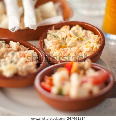 Traditional spanish tapas. Selection of small plates with different meals like salads, meat and sea food. Traditional food, macro perspective, nobody.