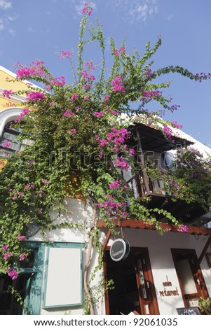 Traditional townhouses in Kas overgrown with Bougainvillea - Kas, Antalya Province, Turkey