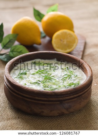 Traditional Tzatziki dip, made with yogurt or sour cream. Selective focus